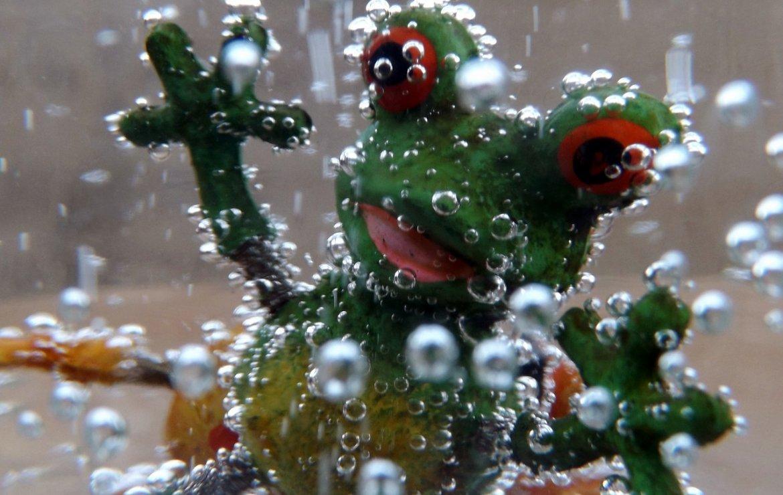 Legătura dintre o broască și relație
