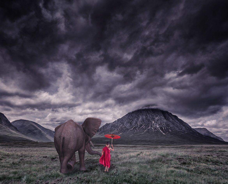 Ți-e frică să afli că ești doar un pui de elefant?